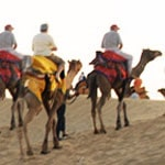 Taxi service in Pushkar